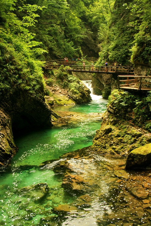 Mountain Gorge, Triglav, Slovenia