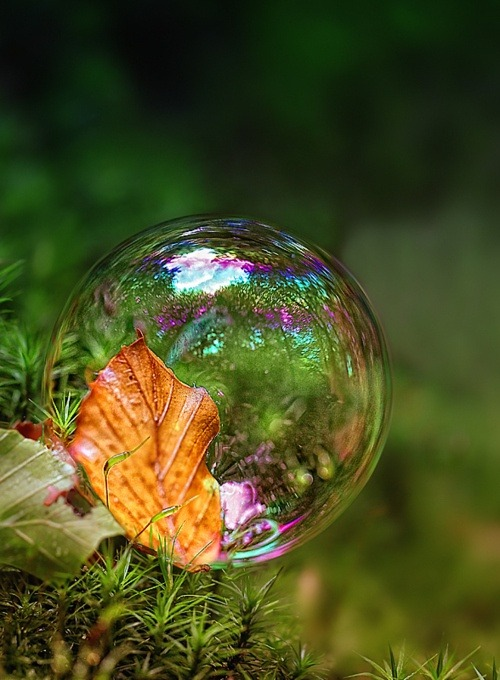 Autumn Leaf Bubble, Italy